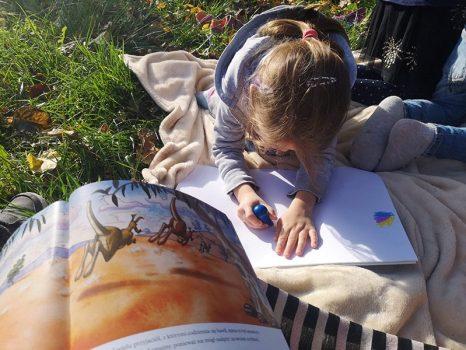kevin-the-kangaroo-book-drawing-animals