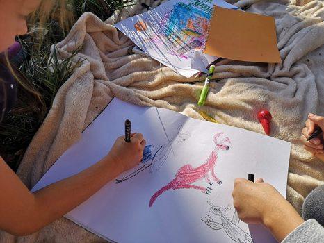 kevin-the-kangaroo-book-drawing-kangaroos