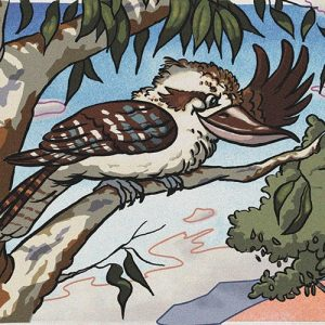 kookaburra Colin character from book Kevin the kangaroo that couldn't hop