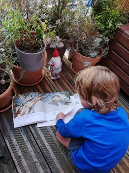 kevin-the-kangaroo-igor-reads-garden