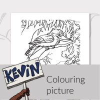 printable-activities-kevin-the-kangaroo-colouring-picture-image-eng